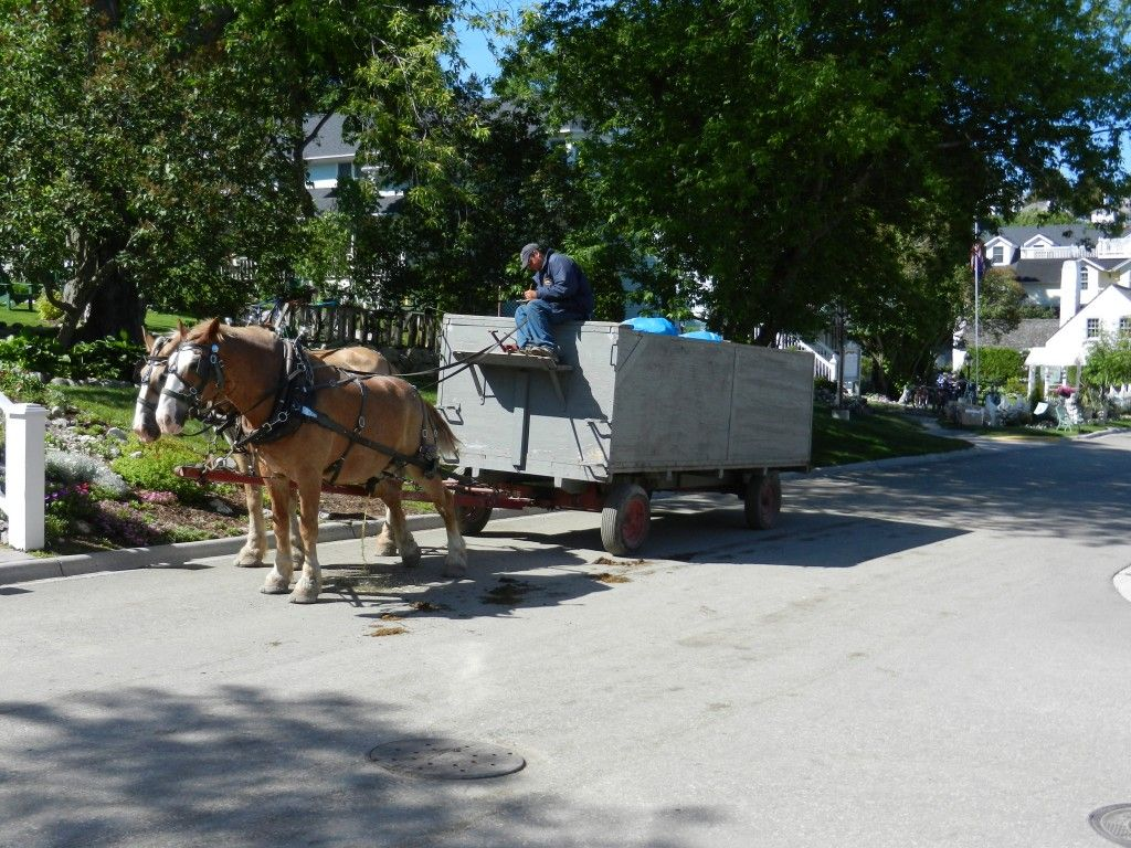Garbage day! Even the garbage 'truck' is horse drawn.