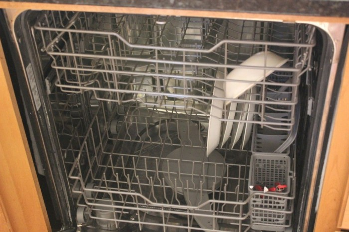 dishes go into the dishwasher
