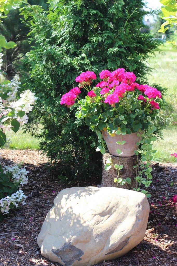 pretty planter, planter ideas