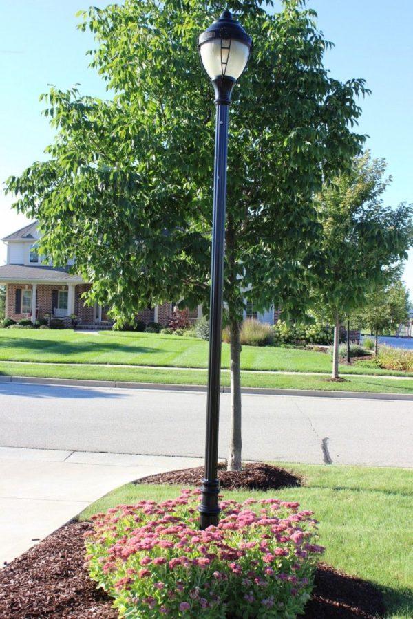 autumn sedum ring around a lamp post