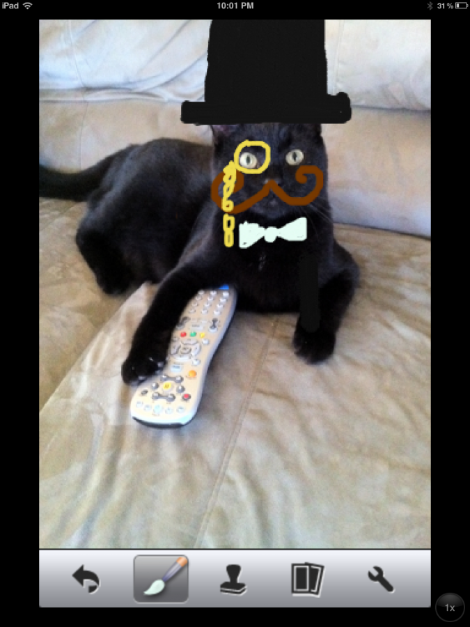 Remote control kitty.