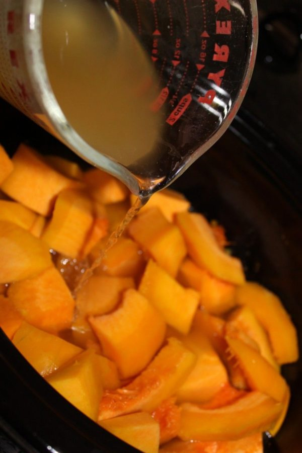 Add chicken stock to almost or just cover the squash.