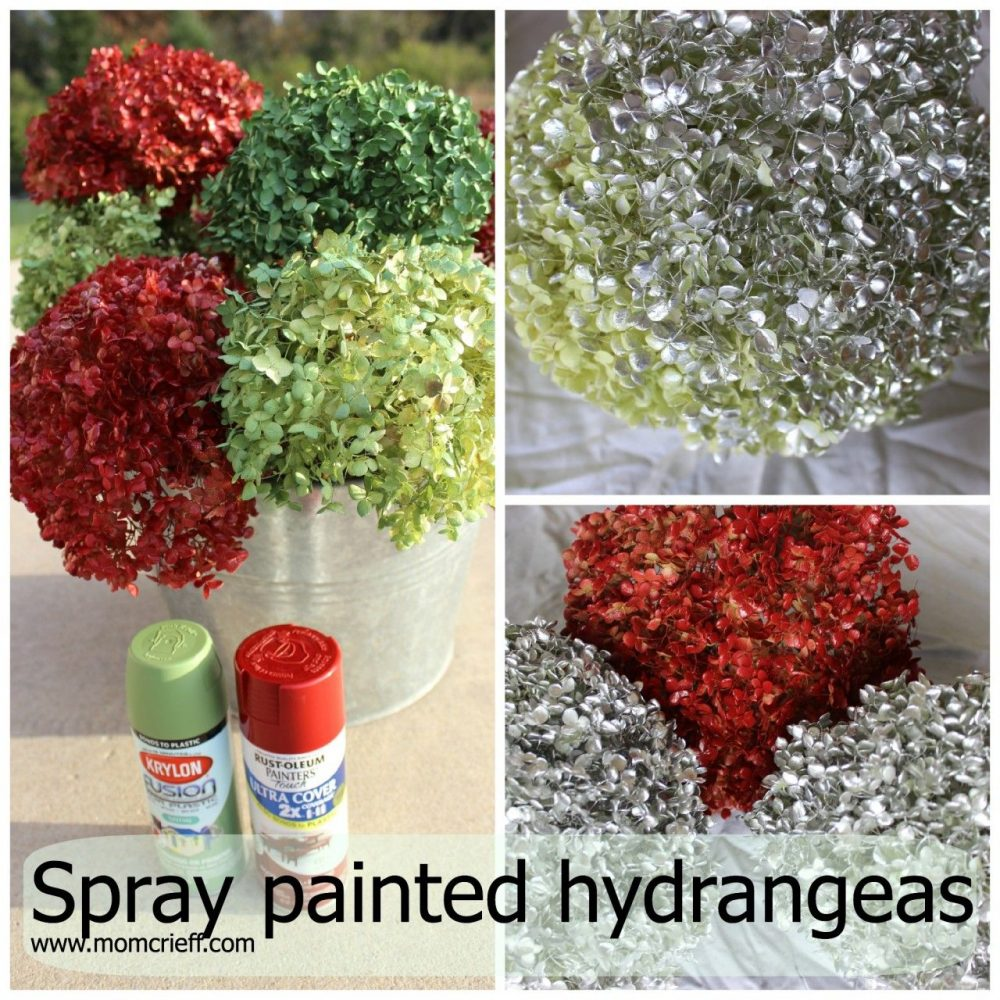 spray paint hydrangeas now use later momcrieff. Black Bedroom Furniture Sets. Home Design Ideas