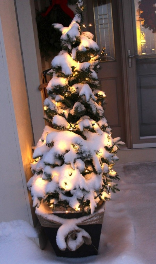 Closeup of christmas tree in a planter with fresh snowfall. White lights shining through the snow.