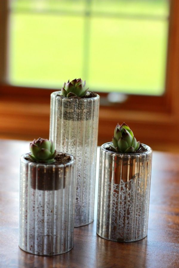 succulents in stagered size candle holders.