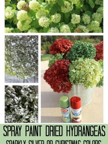 spray painted red and green dried hydrangeas.
