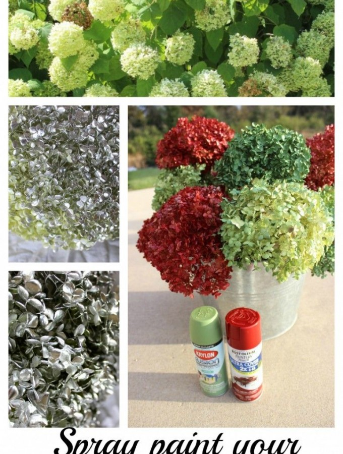 Spray paint hydrangeas now!  Use later.