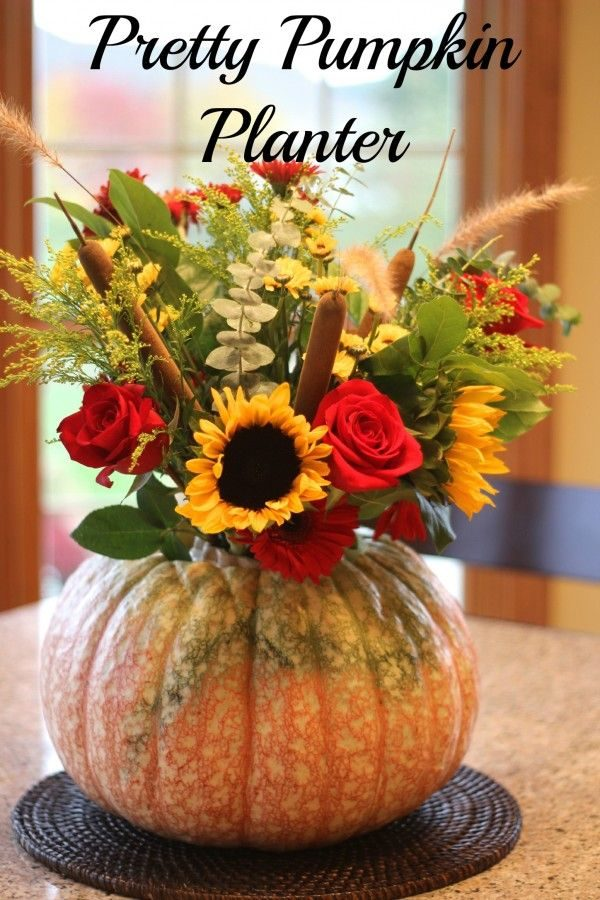 Pretty Pumpkin Planter