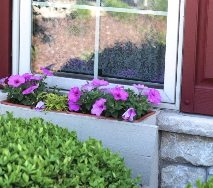 Window Box Planter – some how to tips.