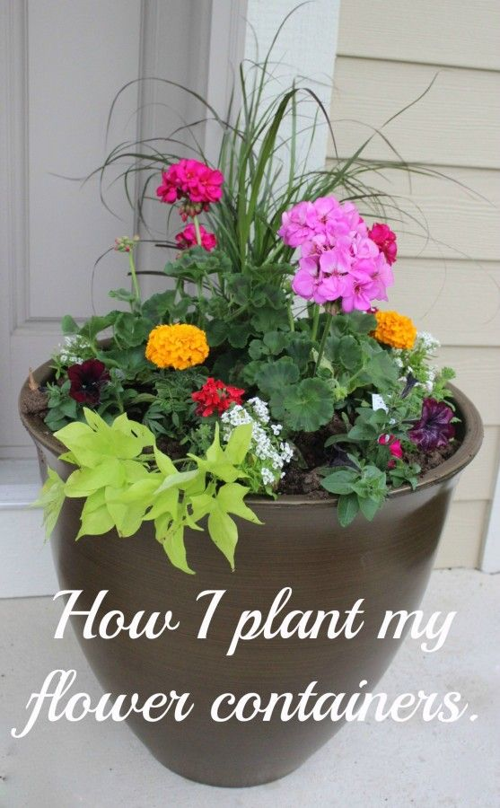 Planter filled with pink geraniums, orange marigolds, purple fountain grass and sweet potato vine.