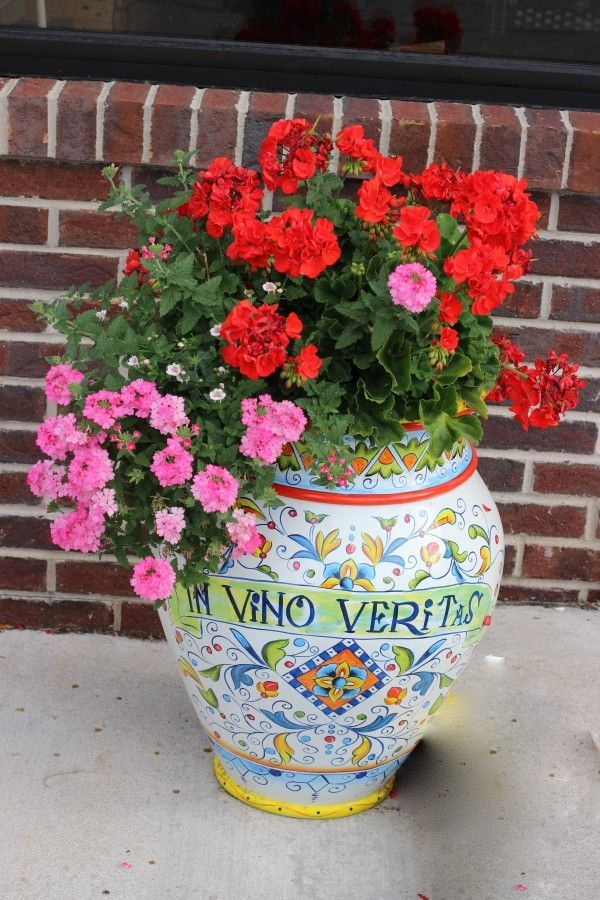 Geraniums and Lantana flowers
