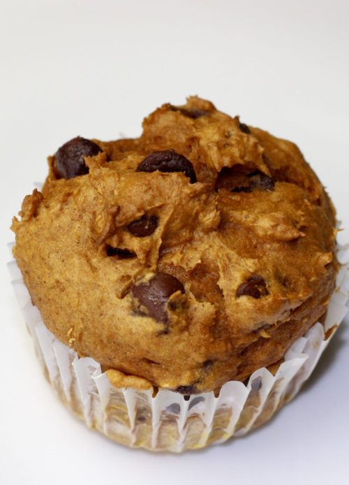 pumpkin chocolate chip muffins
