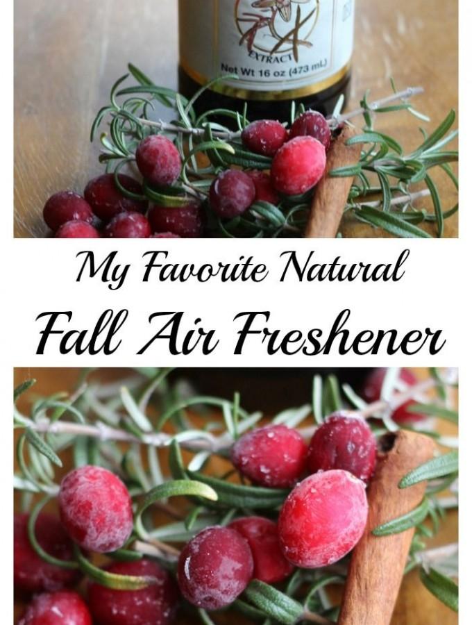 My Fall Natural Air Freshener.