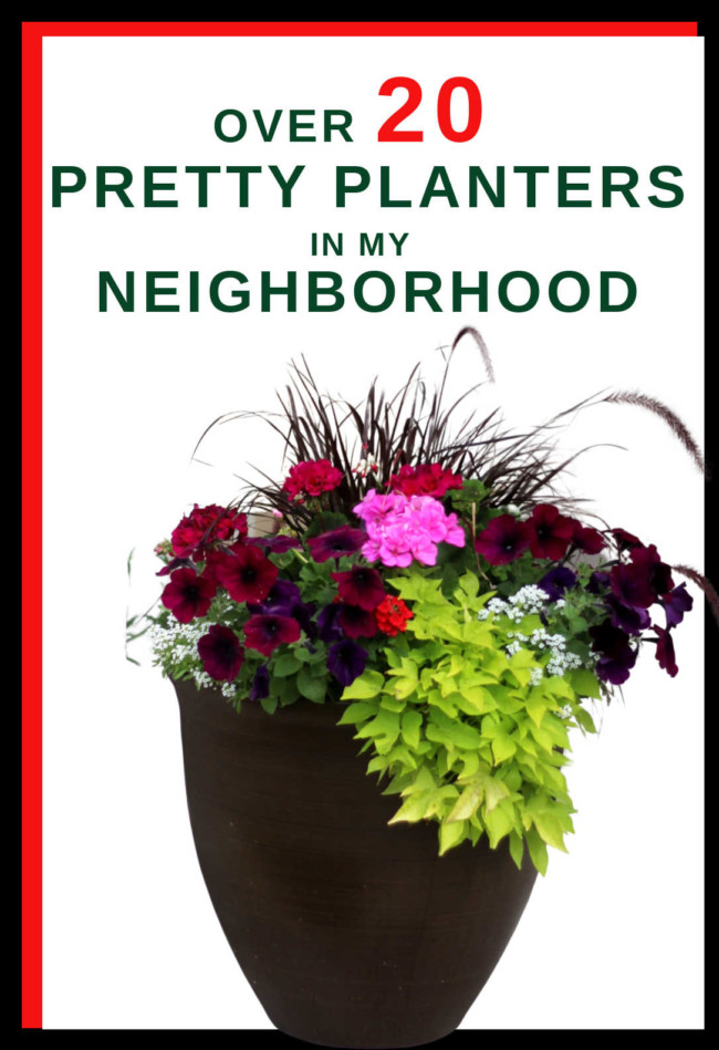 Ideas From 20 Planters My