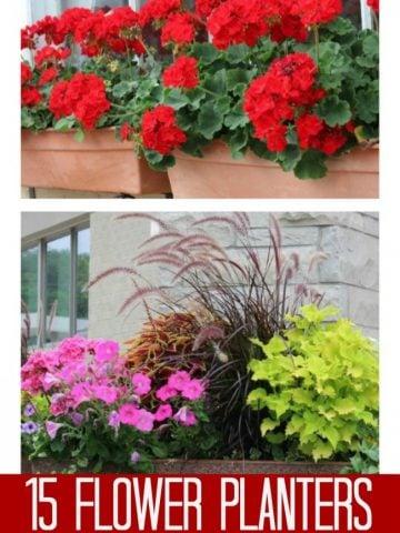 Over 15 flower garden planters.