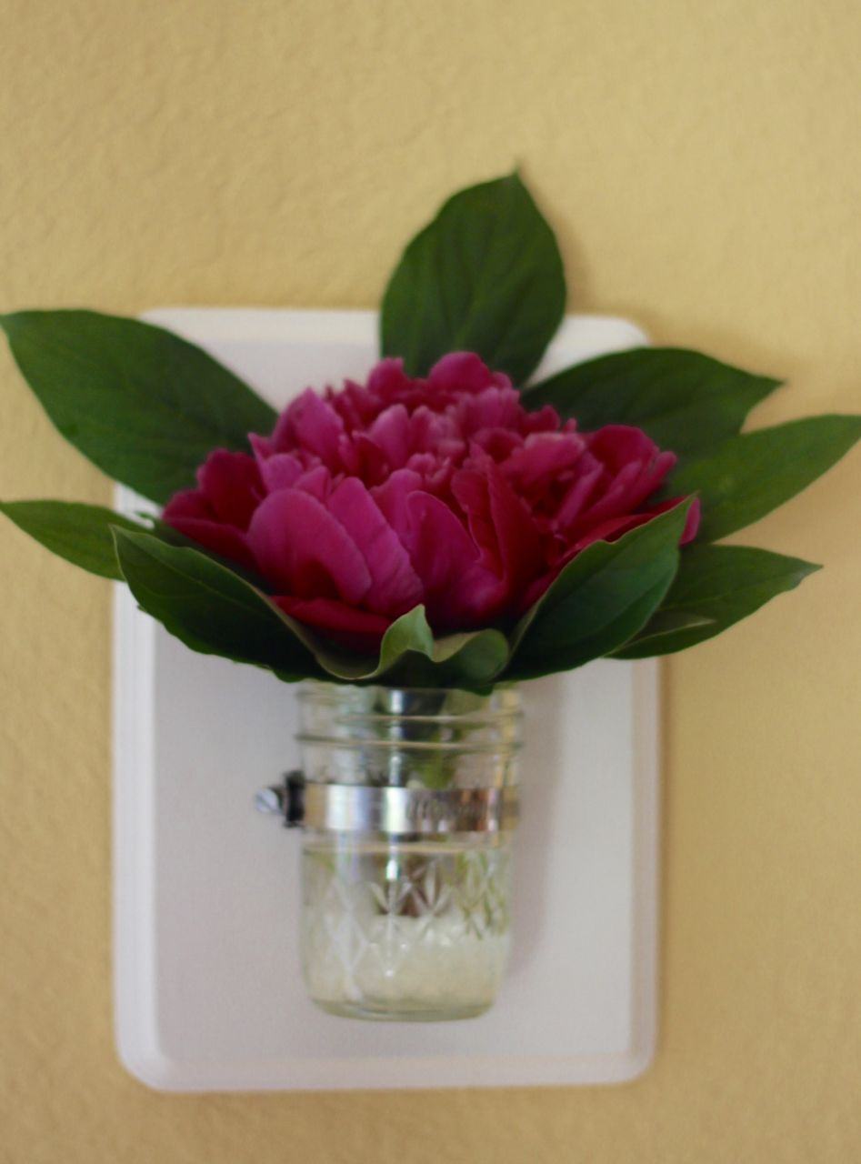 Mason Jar Vase with a beautiful flower hanging on the wall.