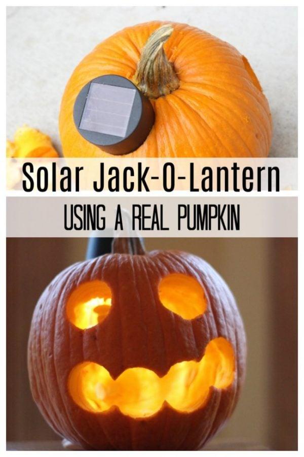 Solar Jack-O-Lantern using a real pumpkin.