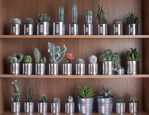 7 Wonderful Urban Gardening Ideas