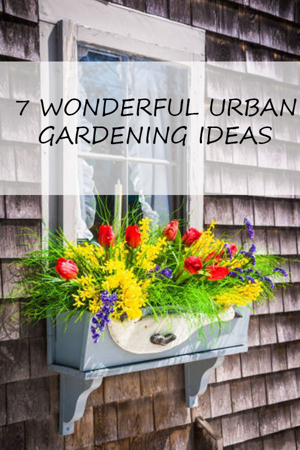 7 Wonderful Urban Gardening Ideas