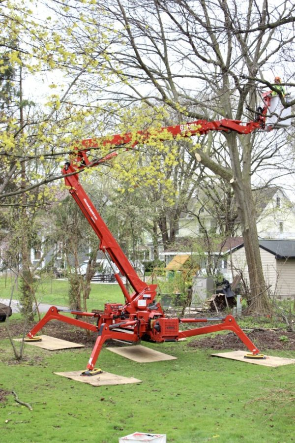 Equipment used to raise arborist into the tall trees to cut down branches.