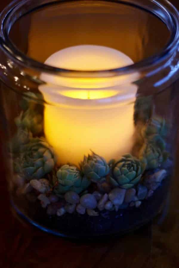 A glowing candle in the center of sedums in a glass storage container.