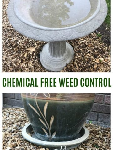 pictures of planters on weed free mulched garden bed