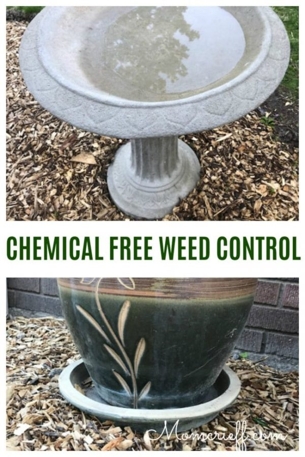 Chemical Free Weed Control in Your Garden Beds