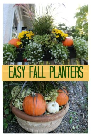 a couple of fall planters featuring mums and pumpkins surrounding a tall grass