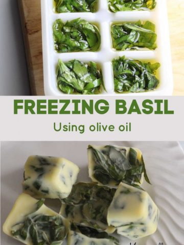 freezing basis in ice cube tray